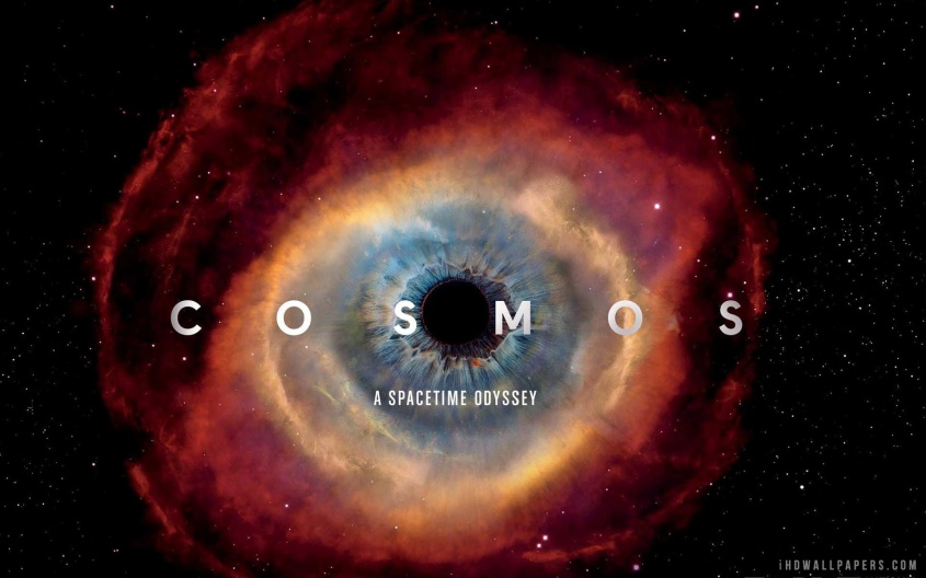 Cosmos 2014 Review